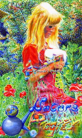 http://artrik.free.fr/2bgal/img/sumo/nature_et_progres.jpg